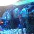 阳山Dj聪聪-全中文粤语Club音乐2019热播港式系列粤唱粤劲DJ慢摇串烧